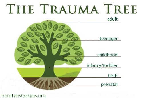trauma-tree-4
